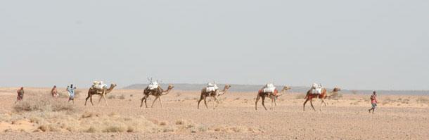 Djibouti - ouverture