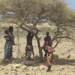 DJIBOUTI, Vecchi e nuovi incendi