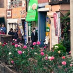 TOKYO, Lungo i binari del tram