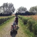 DANIMARCA, Viaggio di famiglia (a tre voci) parte III – Aarhus/Odense/Kerteminde