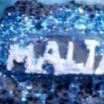 MALTA, Copie